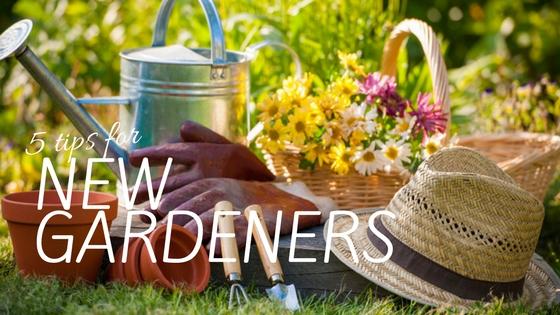 5 tips for new gardeners