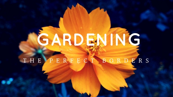 the perfect borders for your garden
