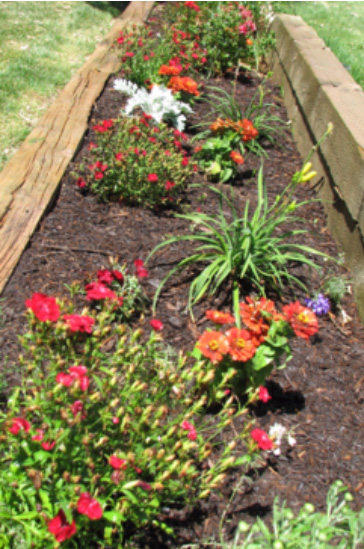 flower bed with brown mulch