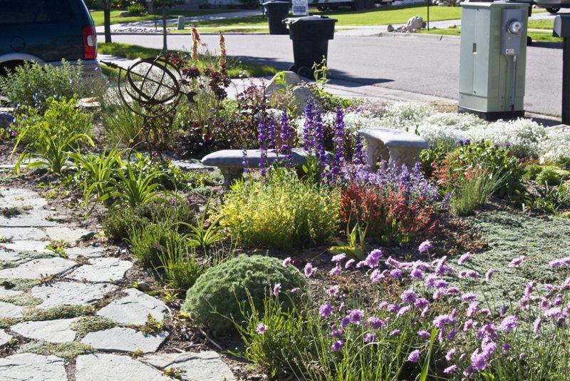 rocky path in an xeriscape garden landscape