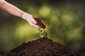 Building a blissful backyard has never been easier. Beaver Lakes Nursery provides custom soil with many organic soil amendments like coco coir, peat moss, rice hulls, and perlite.