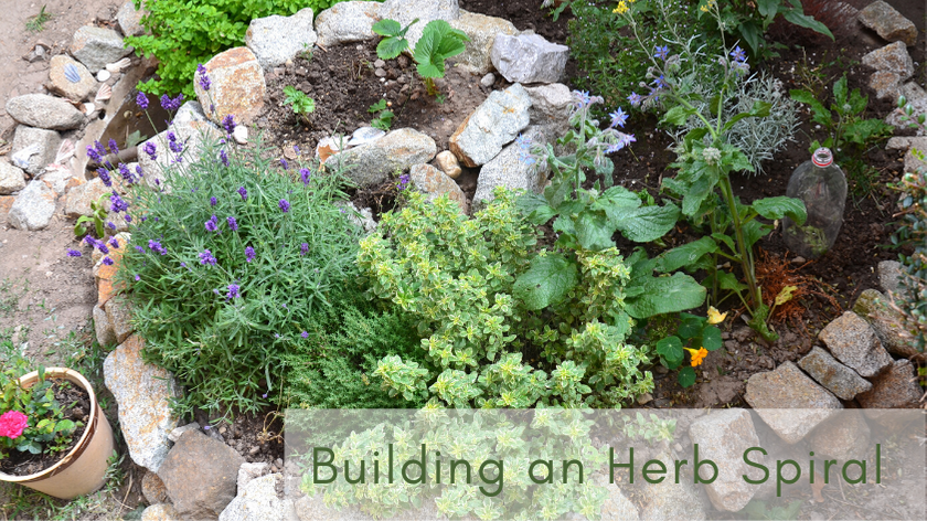 Building an herb spiral is easy and a great way to add more space to a small yard.