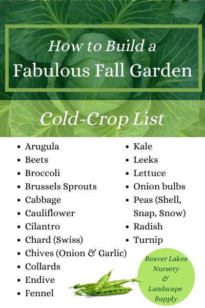 How to build a fabulous fall garden with a cold-crop list for Colorado gardening.