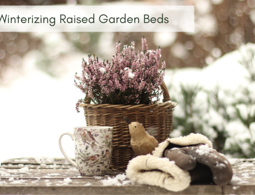 Winterizing Raised Garden Beds