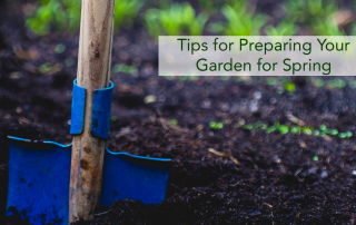 Preparing your garden for spring by loosening the soil.