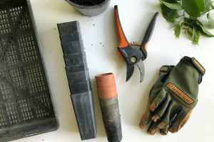 Gardening tools on a white table.